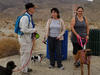 Happy Tails Dog Adventure at Cahuilla Hills Park