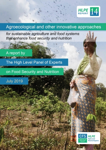How to Transform Our Food System to be Sustainable, Just and Resilient? The Case for Agroecology