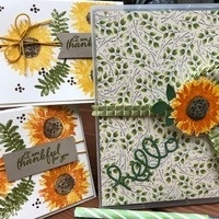 Nature Card Making with a Decorated DVD Case Workshop