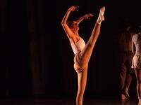 Hub Dance Collective Fall Concert