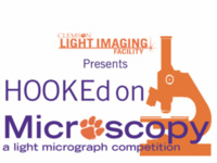 HOOKEd on Microscopy: Micrograph Competition Deadline
