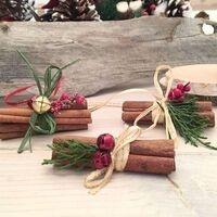 Winter Solstice Cinnamon-Stick Ornament