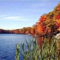 Fall Colors Walk