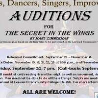 "Auditions for ""Secret in the Wings"""
