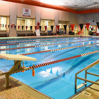 Open Swimming