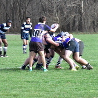 Men's Rugby Tournament