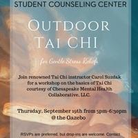 Outdoor Tai Chi