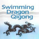The Swimming Dragon Workshop