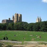 Fall Picnic at Central Park