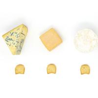 Cheese Talk & Tasting