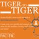 Tiger to Tiger Reception