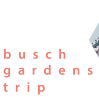 Student Activities Busch Gardens Trip