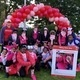 ACS Making Strides for Breast Cancer Westchester Walk