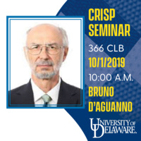 CRiSP Seminar - Bruno D'Aguanno, VIT University, Vellore