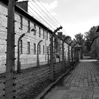 Concentration Camps from Auschwitz to the United States
