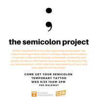 The Semicolon Project