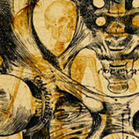 Mineral Metabolism Research Conference: Bone Vasculature in Health and Disease