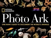 Joel Sartore: Building the Photo Ark