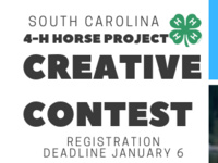 SC 4-H Horse Project Creative Contest Registration