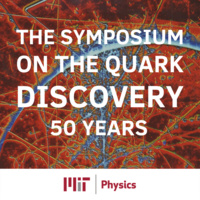 The Quark Discovery, 50 years