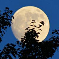 Hunter's Moon Hike