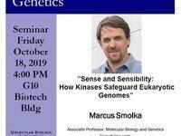 """MBG Friday Seminar - Promotion Talk: Marcus Smolka """"Sense and Sensibility: How Kinases Safeguard Eukaryotic Genomes:"""
