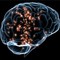 Inhibition, Homeostasis and Autism in the Cerebral Cortex