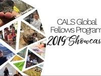 CALS Global Fellows Program Showcase