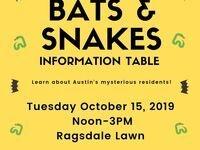 Bats and Snakes! at St. Edward's University