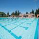 Alumni Swim Meet