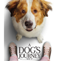 Movie Matinees @ Your Library: A Dog's Journey (2019)