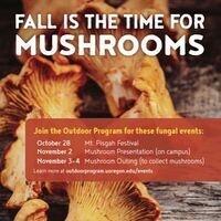 Mushroom Field Trip