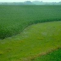SOIL 2019:  Searching for Solutions for Iowa's Water and Land