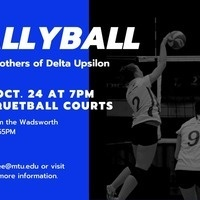 Wallyball with Delta Upsilon