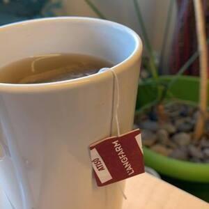 IEW2019: Coffee, Tea, and SRB!