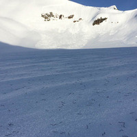 Glacial Ice Worm Seminar