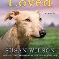 Book Talk & Signing: Susan Wilson