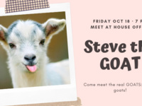 Steve the GOAT