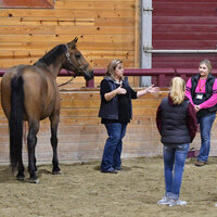 Equine Science Exploration Days