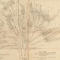 INTERMEDIATE GENEALOGY WORKSHOP  How to Trace Your Virginia Roots