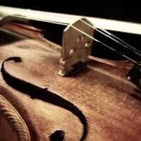 Vivo Chamber Players Recital