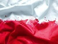 Poland's Independence Day - Giedroyc Discussion & Exhibition