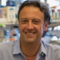 """Seminar: """"Discovery, Mechanisms, and Therapeutic Targeting of PI3-Kinase/AKT Signaling in Cancer"""""""