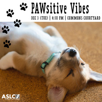 Pawsitive Vibes