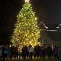 President's Seventh Annual Christmas Tree Lighting