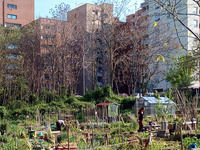 Rome Neighborhood Studies: Urban Agriculture and Community in Rome