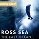 New Exhibit, Ross Sea: The Last Ocean