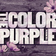 """The Color Purple"" Educational Experience"