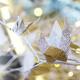 Managing Stress during the Holiday Season