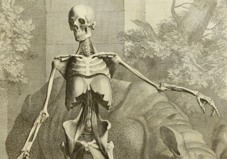Annual Display of Rare Anatomical Texts